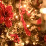 ★クリスマスイベント★12/20~25